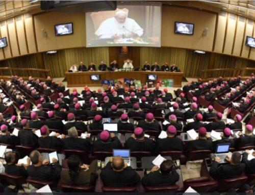 Actualités du Synode